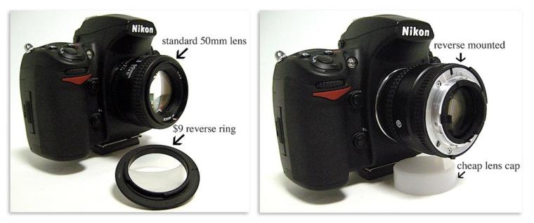 Reverse-Lens1